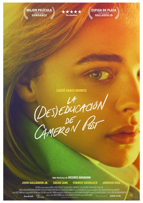 Imatge del cartell de la pel·lícula La (des)educación de Cameron Post