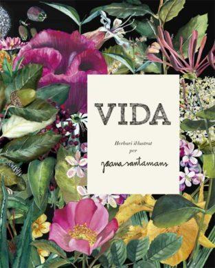 Imatge de la portada del llibre Vida