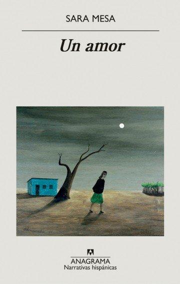 Imatge de la portada de la novel·la Un amor