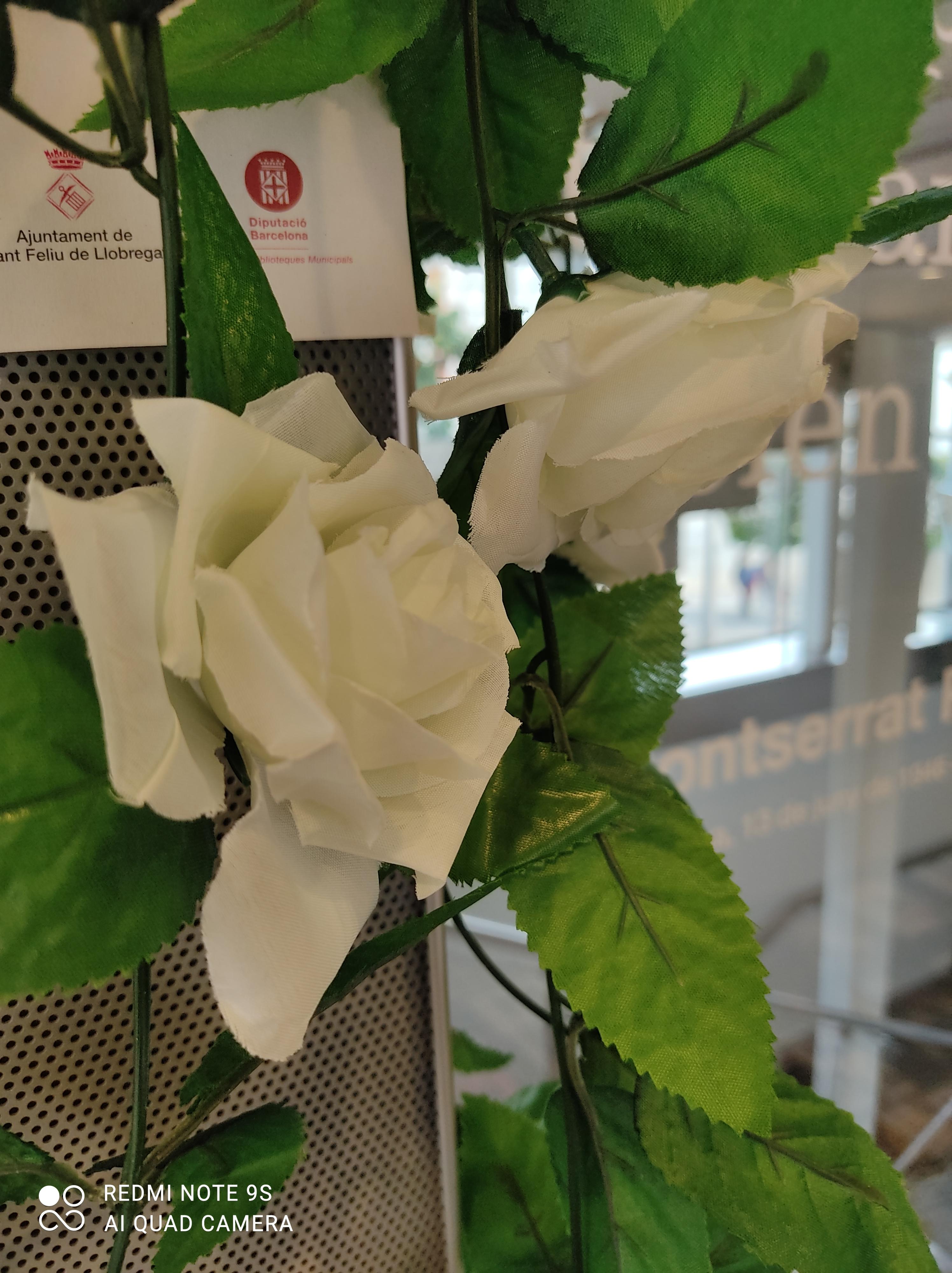 Imatge d'un detall d'una rosa